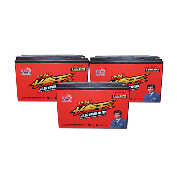 Dongjin E-bike Battery